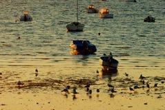 小船在早晨太阳的水停放了 免版税库存照片