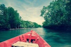 小船在美洲红树森林Rayong,泰国里 免版税库存照片