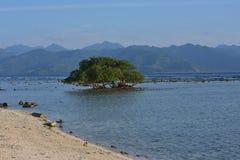 小船在龙目岛 图库摄影