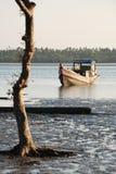 小船捕鱼缅甸 库存图片