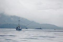 小船捕鱼 免版税库存照片