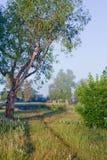 2009年小船早期的有雾的湖早晨拍摄了俄国春天日出 库存照片
