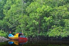 小船森林 免版税库存照片