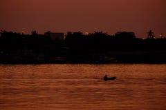 小船横穿河 库存图片