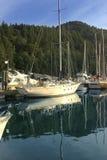 小船海岛温哥华 免版税库存照片