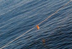 小船的一条绳索在海 图库摄影