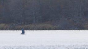 小船的渔夫在秋天湖捉住转动的矛 股票视频