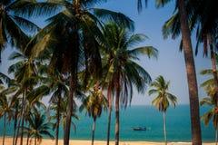 小船看法在海海滩的在前景通过棕榈 免版税库存照片