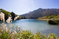 小船行在湖Yunoko,日本湖边的  免版税库存图片