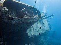 小船雪松自豪感击毁在亚喀巴,约旦,红海 图库摄影