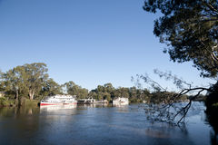 小船默里桨河 库存图片