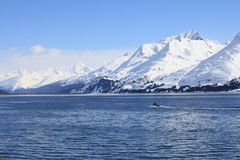 小船,现在山,海 库存照片