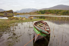 小船killarney国家公园 库存图片