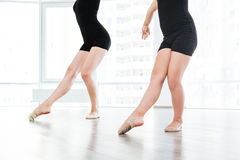 小芭蕾舞女演员和个人经典芭蕾老师的播种的图象 库存图片