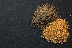 小茴香籽和香料在黑背景 库存图片