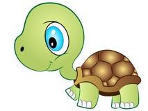 小草龟传染媒介例证 库存图片