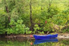 小蓝色小船在一条小运河停放了在美洲红树前面 免版税图库摄影