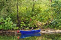 小蓝色小船在一条小运河停放了在美洲红树前面 库存图片