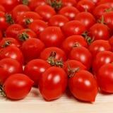 小蕃茄和新鲜的草本在木背景 免版税图库摄影
