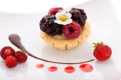 小蛋糕的果子 图库摄影