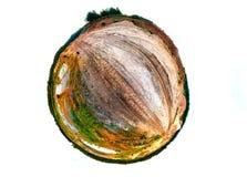 小行星与浇灌,铺沙,沙丘和海滨别墅 免版税库存图片