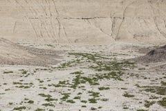 小谷在沙漠 库存照片