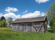 小谷仓在一个开花的春天草甸 图库摄影