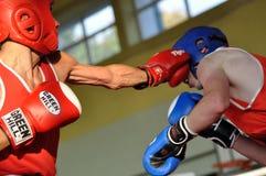 小辈拳击比赛 库存照片
