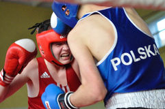 小辈拳击比赛 免版税图库摄影