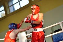 小辈拳击比赛 免版税库存照片