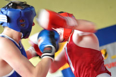 小辈拳击比赛 免版税库存图片