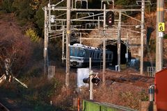 小逃跑在铁轨的sagano线火车隧道有秋天视图 库存图片