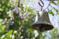 小金属东方响铃徘徊在庭院里的,晴天,绿叶  免版税图库摄影
