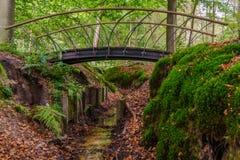 小金属桥梁在森林 库存图片