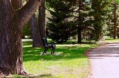 小镇公园走道,高河,亚伯大,加拿大 库存图片