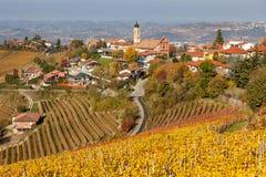 小镇和秋季葡萄园 免版税库存照片