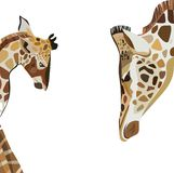 小长颈鹿的美好的可爱的逗人喜爱的美妙的多色夏天例证与他的长颈鹿妈妈传染媒介的 向量例证