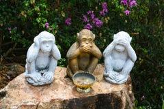 小雕象grustyaschih猴子 图库摄影
