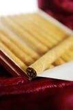 小雪茄烟接近  免版税库存照片
