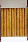小雪茄烟 图库摄影