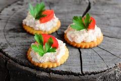 小饼干薄脆饼干用在木背景的乳脂干酪 从盐味的饼干薄脆饼干的快的快餐,辣乳脂干酪 库存照片