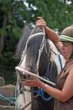 小马辔 免版税库存图片