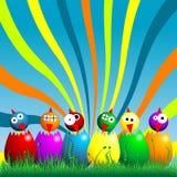 小鸡复活节 免版税图库摄影