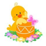 小鸡逗人喜爱的复活节 库存照片