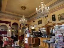 小鸡维也纳餐馆 免版税库存照片