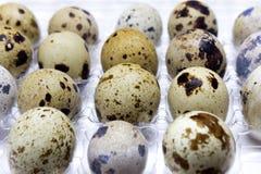 小鹌鹑蛋照片在透明塑胶容器的 我喜欢健康生活方式,健康吃食物概念 复活节ba 库存图片