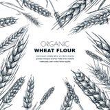 小麦面粉标签设计模板 剪影谷物耳朵的传染媒介例证 面包店包裹背景 库存例证