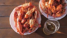 小龙虾厨师在水中用香料和草本 热的煮沸的小龙虾 r r 股票录像