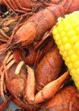 小龙虾和玉米 免版税图库摄影