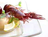 小龙虾成份表 图库摄影